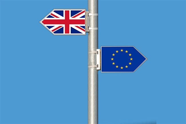Government publishes Brexit impact reports